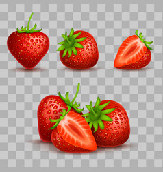realistic sweet and fresh strawberry vector image