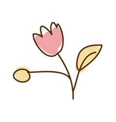 watercolor hand drawn silhouette of pink tulip vector image