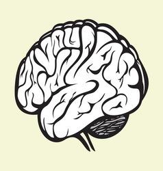 Brain2 vector