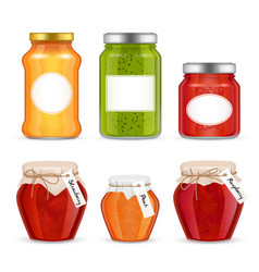 Realistic fruit jam jar icon set vector