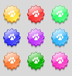 trace dogs icon sign symbol on nine wavy colourful vector image