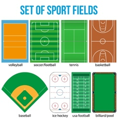 Set of most popular sample sport fields vector image vector image