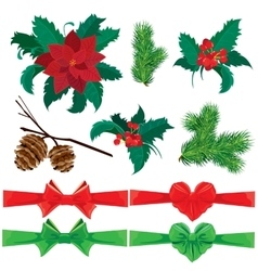 Set of winter holiday plants flowers berries and vector image vector image