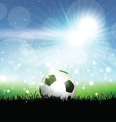 Soccer ball in grassy landscape vector image vector image