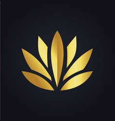 lotus flower beauty color gold logo vector image