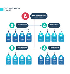 Business structure of organization vector