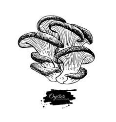 Oyster mushroom hand drawn vector