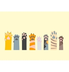 Cartoon Different Cat Paw Set vector image vector image