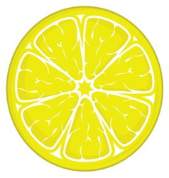 limun slice resize vector image vector image