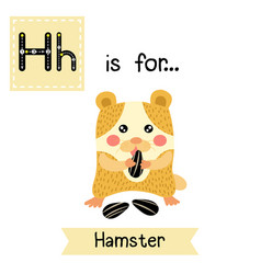 Letter h tracing hamster eating sunflower seeds vector