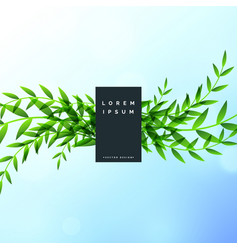 nature leaves beautiful background design vector image