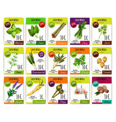 Spice and herbs vegetables price tags set vector