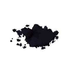 ink stain vector image vector image