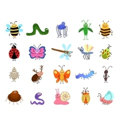 Funny bugs cute insects isolated on white vector image