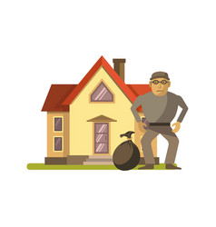 robber at the house vector image