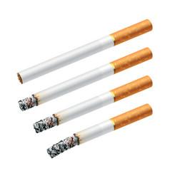 smoking a cigarette vector image