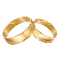 Wedding rings isolated isolated vector image