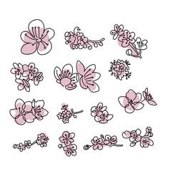 japanese sakura buds set cherry blossom flowers vector image