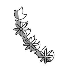 Branch flower decoration celebration outline vector