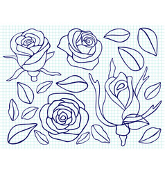 ballpoint pen drawing roses and leaves vector image