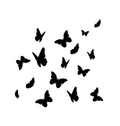 Beautifil butterfly silhouette isolated on white vector
