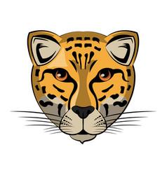 Leopard wild animal vector