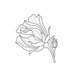 Rose bud monochrome drawing for coloring book vector