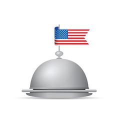 usa flag dinner platter vector image vector image