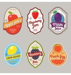 Retro fruit posters or labels vector image
