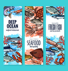 Banners of seafood fish products sketch vector