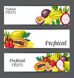 Banners with exotic tropical fruits vector