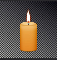 candle flame fire isolated on checkered background vector image
