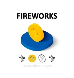 Fireworks icon in different style vector image