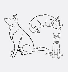 german shepherd pet dog animal hand drawing vector image
