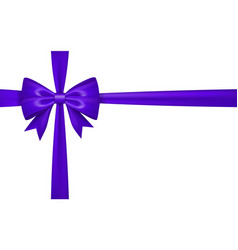 gift bow ribbon silk purple bow tie isolated vector image