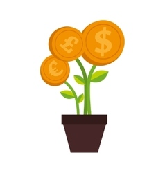 Plant money pot dollar isolated vector