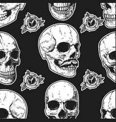 seamless pattern with skulls and roses design vector image