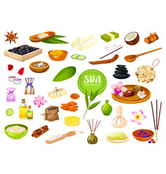 Spa salon skin care and body and massage therapy vector
