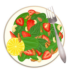spinach salad with nut and fruit icon cartoon vector image