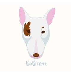 dog Bullterrier vector image vector image