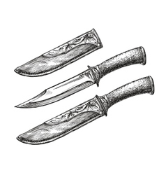 Hand-drawn vintage knife Sketch edged weapon vector image