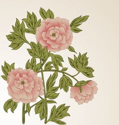Background with peonies vector