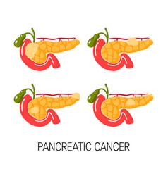 Healthy pancreas concept vector
