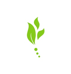 leaf nature herb green logo vector image