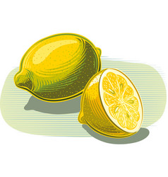 Lemons on white vector