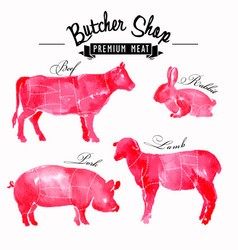 meat symbols set pork beef lamb rabbit vector image