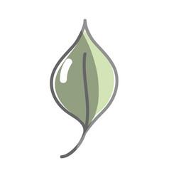 Nice organic leaf plant vector