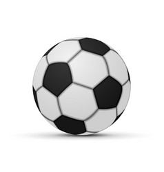 realistic soccer ball isolated vector image