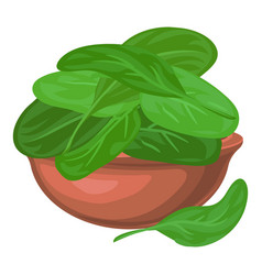 spinach leaf in bowl icon cartoon style vector image