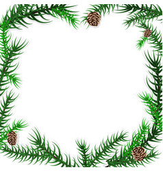 spruce branch frame vector image